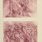 הזית / הדפס פלסטי